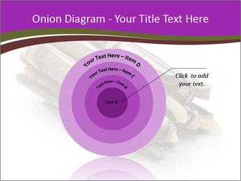 0000077359 PowerPoint Templates - Slide 61