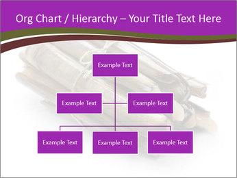 0000077359 PowerPoint Templates - Slide 66