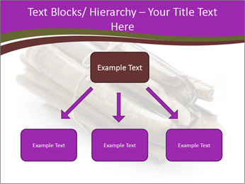 0000077359 PowerPoint Templates - Slide 69