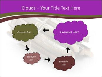 0000077359 PowerPoint Templates - Slide 72