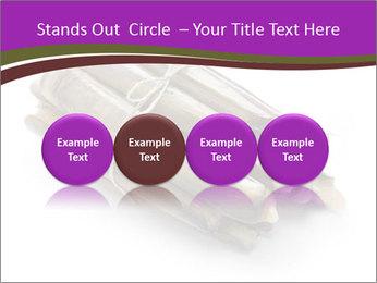 0000077359 PowerPoint Templates - Slide 76