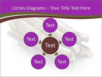 0000077359 PowerPoint Templates - Slide 78