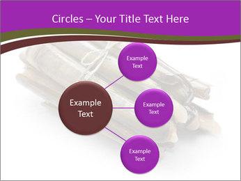 0000077359 PowerPoint Templates - Slide 79