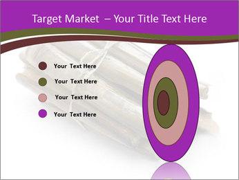 0000077359 PowerPoint Templates - Slide 84