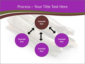 0000077359 PowerPoint Templates - Slide 91