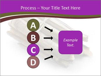 0000077359 PowerPoint Templates - Slide 94