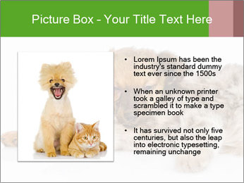 0000077374 PowerPoint Template - Slide 13