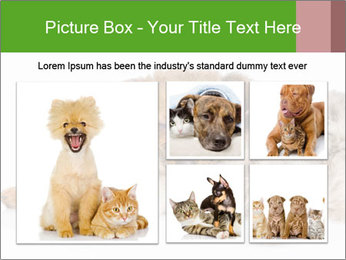 0000077374 PowerPoint Template - Slide 19