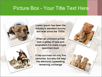 0000077374 PowerPoint Template - Slide 24