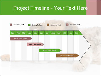 0000077374 PowerPoint Template - Slide 25