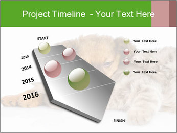 0000077374 PowerPoint Template - Slide 26