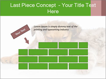 0000077374 PowerPoint Template - Slide 46