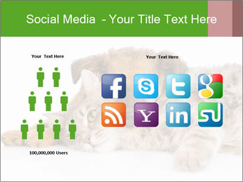 0000077374 PowerPoint Template - Slide 5