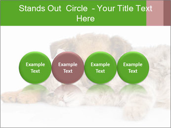 0000077374 PowerPoint Template - Slide 76