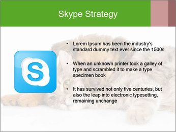 0000077374 PowerPoint Template - Slide 8