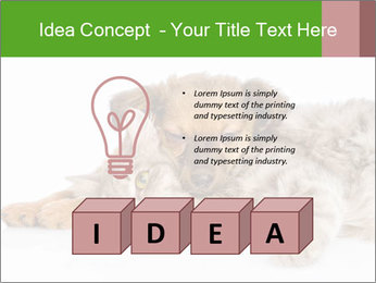 0000077374 PowerPoint Template - Slide 80