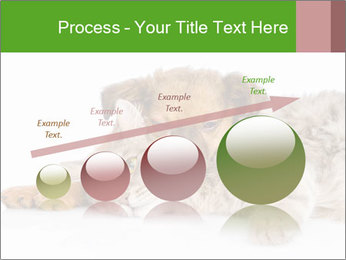 0000077374 PowerPoint Template - Slide 87