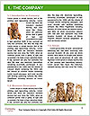 0000077374 Word Template - Page 3