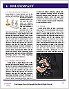 0000077378 Word Template - Page 3