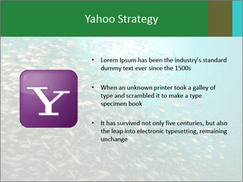 0000077379 PowerPoint Templates - Slide 11