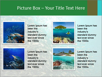 0000077379 PowerPoint Template - Slide 14