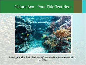 0000077379 PowerPoint Templates - Slide 15