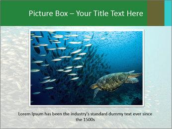 0000077379 PowerPoint Templates - Slide 16