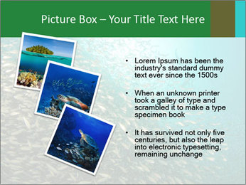 0000077379 PowerPoint Template - Slide 17