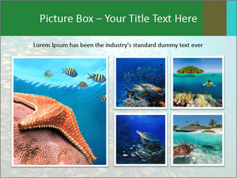 0000077379 PowerPoint Template - Slide 19