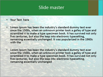 0000077379 PowerPoint Templates - Slide 2
