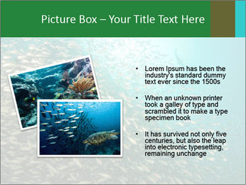 0000077379 PowerPoint Template - Slide 20