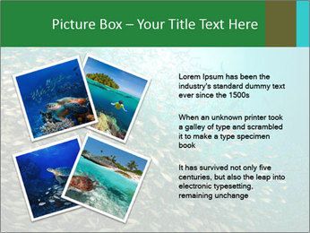0000077379 PowerPoint Template - Slide 23