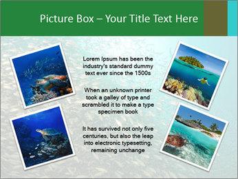 0000077379 PowerPoint Templates - Slide 24