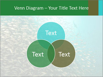 0000077379 PowerPoint Template - Slide 33