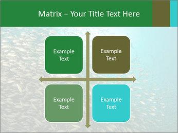 0000077379 PowerPoint Templates - Slide 37
