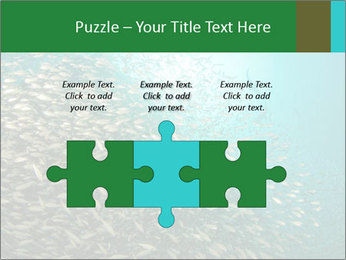 0000077379 PowerPoint Templates - Slide 42