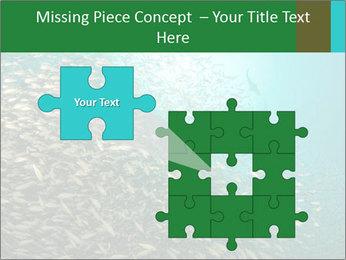 0000077379 PowerPoint Templates - Slide 45