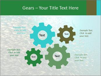 0000077379 PowerPoint Templates - Slide 47