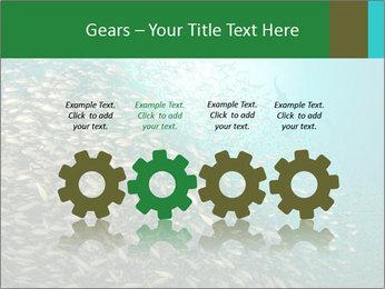 0000077379 PowerPoint Templates - Slide 48