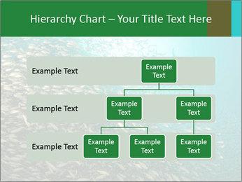 0000077379 PowerPoint Templates - Slide 67