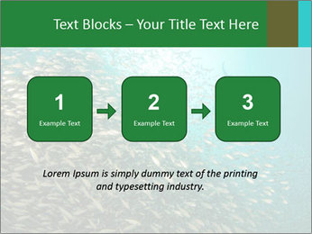 0000077379 PowerPoint Template - Slide 71