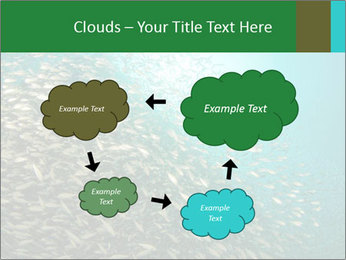0000077379 PowerPoint Templates - Slide 72
