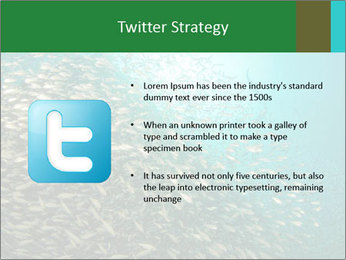 0000077379 PowerPoint Templates - Slide 9