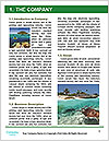 0000077379 Word Template - Page 3