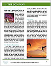 0000077380 Word Template - Page 3