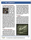 0000077386 Word Template - Page 3