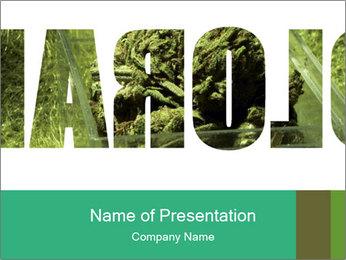 0000077387 PowerPoint Templates - Slide 1