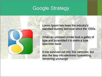 0000077387 PowerPoint Templates - Slide 10