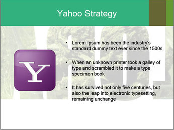 0000077387 PowerPoint Templates - Slide 11