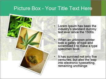 0000077387 PowerPoint Templates - Slide 17